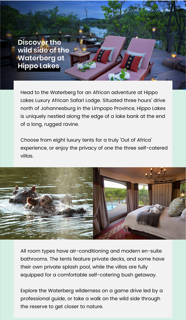 Discover the wild side of the Waterberg at Hippo Lakes